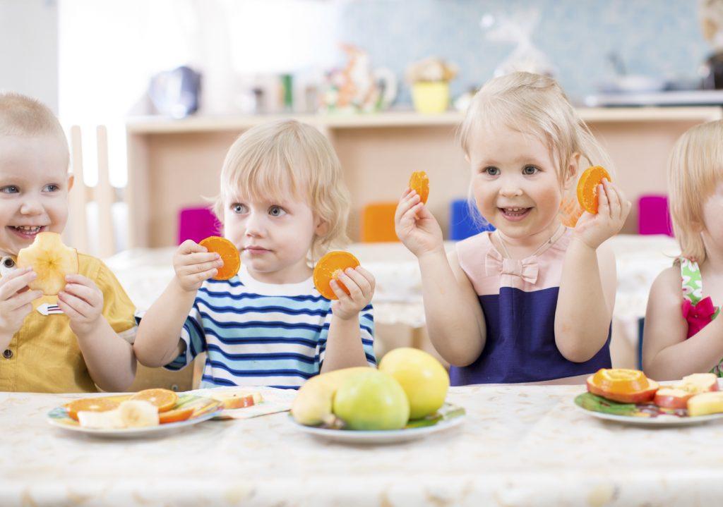 comedor ecologico escolar
