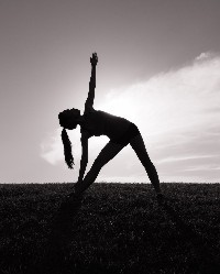 mp2 yoga