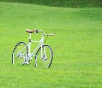 Diet-bicicleta-prado